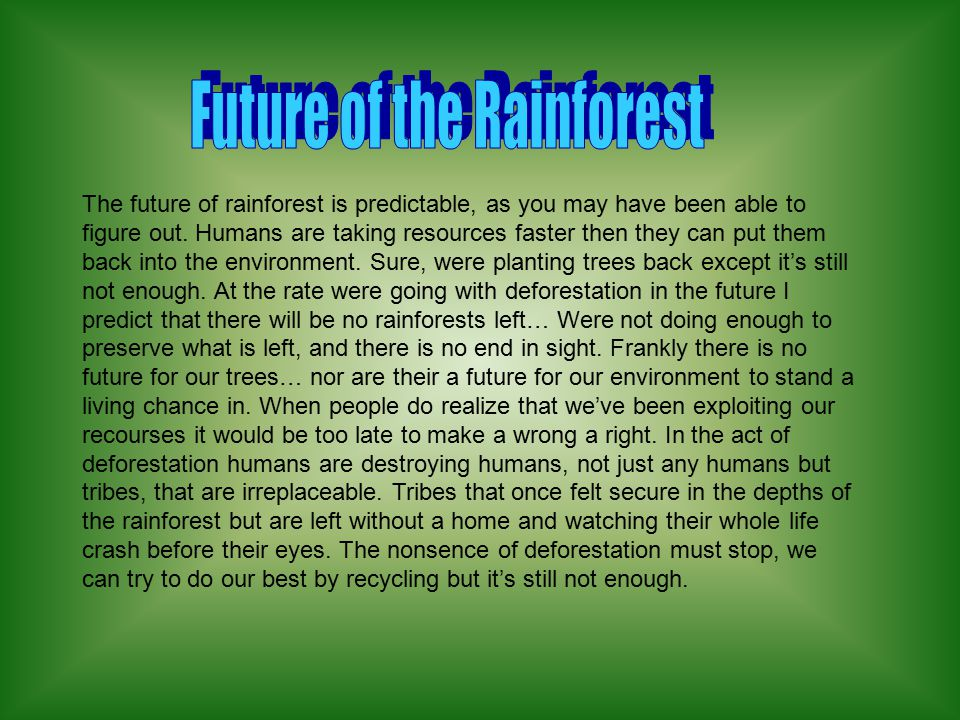 The Future hold a lot of information that we can not yet guess, but all in all, rainforests are coming back very fast. One can only hope that there wo