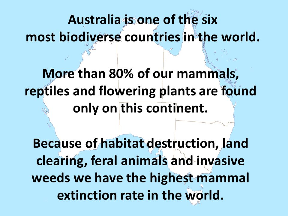 Australia is one of the six most biodiverse countries in the world. More than 80% of our mammals, reptiles and flowering plants are found only on this