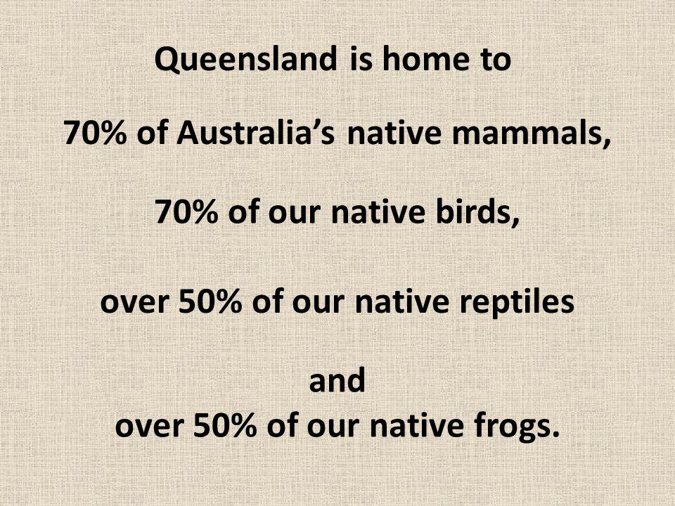 12 mammals are now extinct in Queensland.Queensland now has 226 species of mammals.