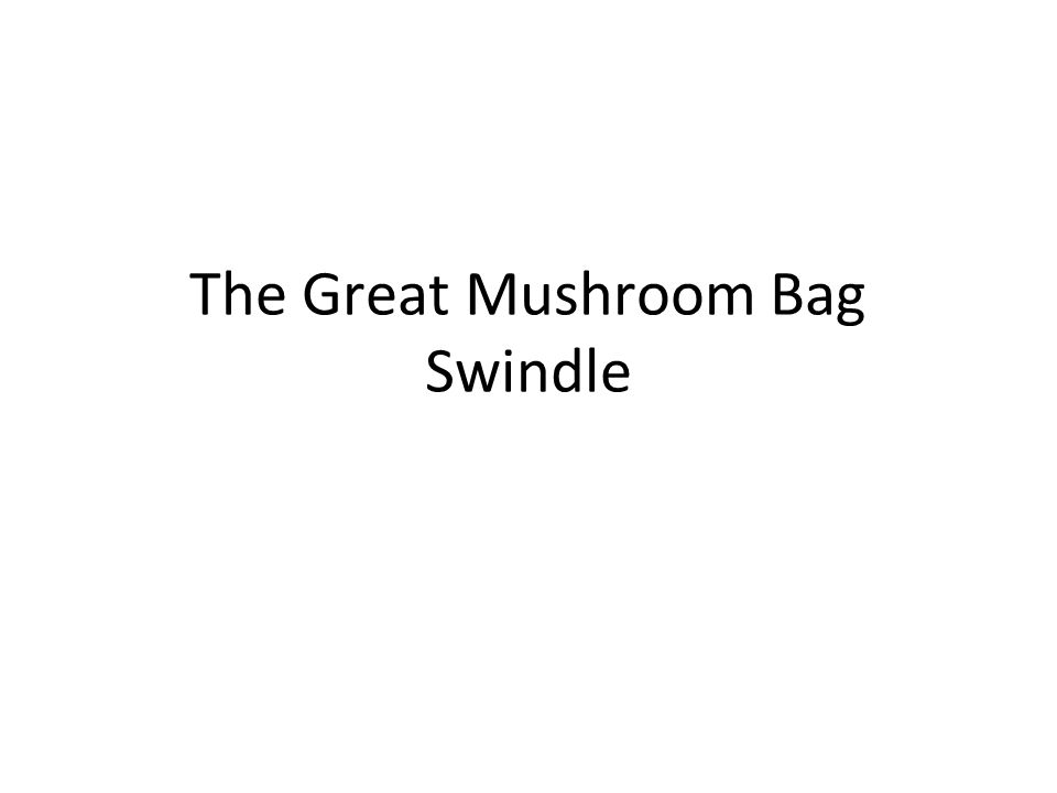The Great Mushroom Bag Swindle