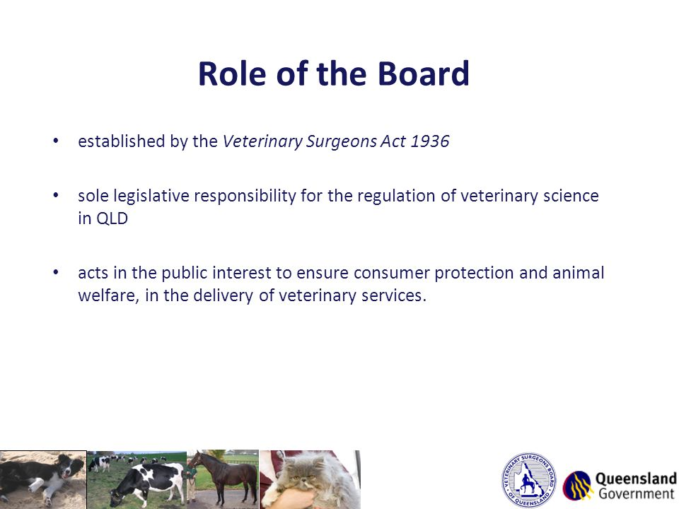 Role of the Board established by the Veterinary Surgeons Act 1936 sole legislative responsibility for the regulation of veterinary science in QLD acts in the public interest to ensure consumer protection and animal welfare, in the delivery of veterinary services.