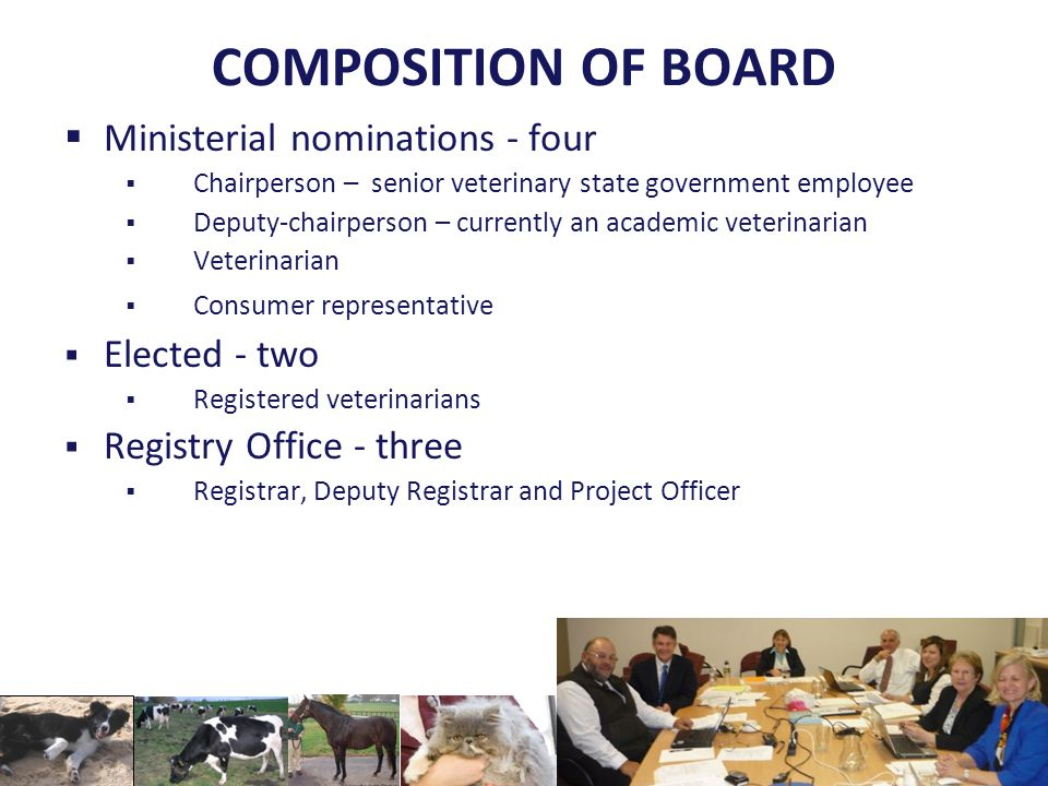 COMPOSITION OF BOARD  Ministerial nominations - four  Chairperson – senior veterinary state government employee  Deputy-chairperson – currently an academic veterinarian  Veterinarian  Consumer representative  Elected - two  Registered veterinarians  Registry Office - three  Registrar, Deputy Registrar and Project Officer
