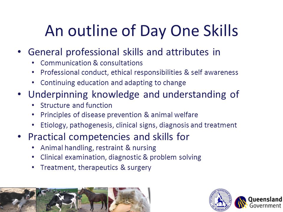 An outline of Day One Skills General professional skills and attributes in Communication & consultations Professional conduct, ethical responsibilities & self awareness Continuing education and adapting to change Underpinning knowledge and understanding of Structure and function Principles of disease prevention & animal welfare Etiology, pathogenesis, clinical signs, diagnosis and treatment Practical competencies and skills for Animal handling, restraint & nursing Clinical examination, diagnostic & problem solving Treatment, therapeutics & surgery