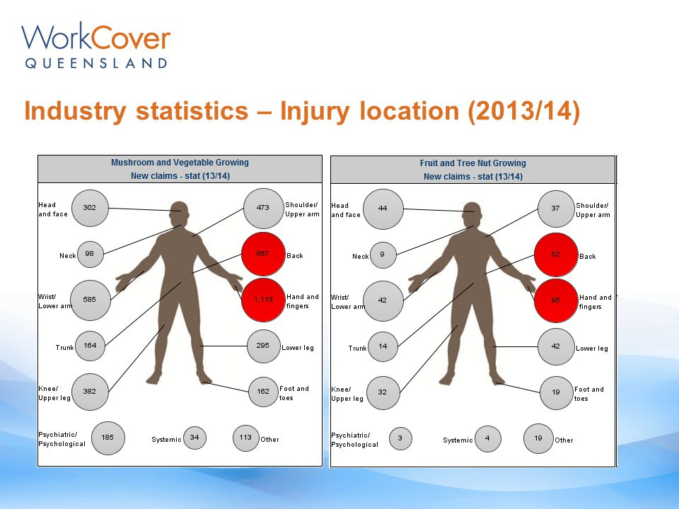 Industry statistics – Injury location (2013/14)