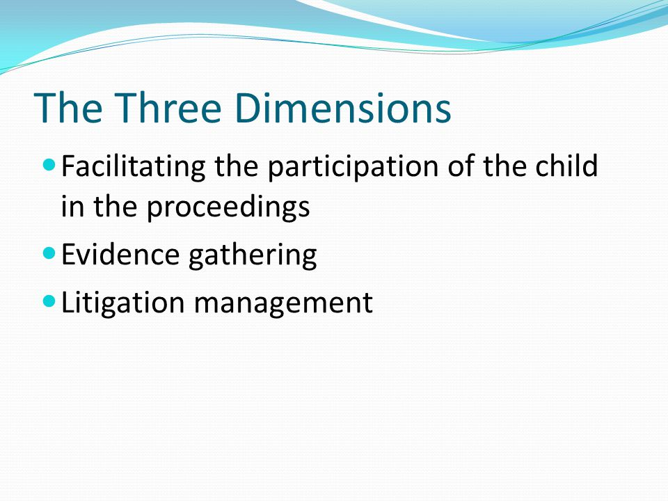 The Three Dimensions Facilitating the participation of the child in the proceedings Evidence gathering Litigation management