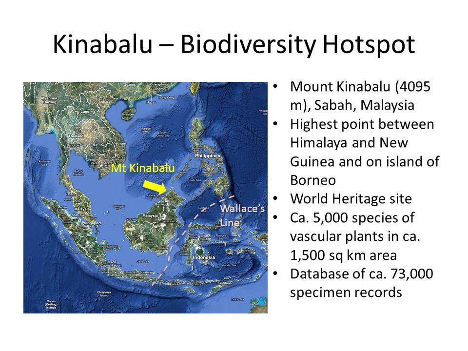 Kinabalu – Biodiversity Hotspot Wallace's Line Mt Kinabalu Mount Kinabalu (4095 m), Sabah, Malaysia Highest point between Himalaya and New Guinea and on island of Borneo World Heritage site Ca.