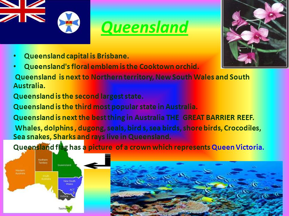 Queensland Queensland capital is Brisbane. Queensland's floral emblem is the Cooktown orchid. Queensland is next to Northern territory, New South Wale