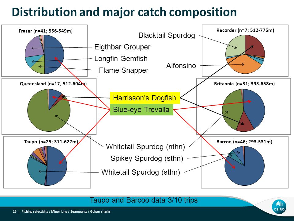 Distribution and major catch composition 13 | Fraser (n=41; 356-549m) Recorder (n=7; 512-775m) Queensland (n=17, 512-604m)Britannia (n=31; 393-658m) Taupo (n=25; 311-622m) Barcoo (n=46; 293-531m) Blue-eye Trevalla Harrisson's Dogfish Whitetail Spurdog (sthn) Whitetail Spurdog (nthn) Eigthbar Grouper Flame Snapper Spikey Spurdog (sthn) Longfin Gemfish Alfonsino Blacktail Spurdog Taupo and Barcoo data 3/10 trips Fishing selectivity / Minor Line / Seamounts / Gulper sharks