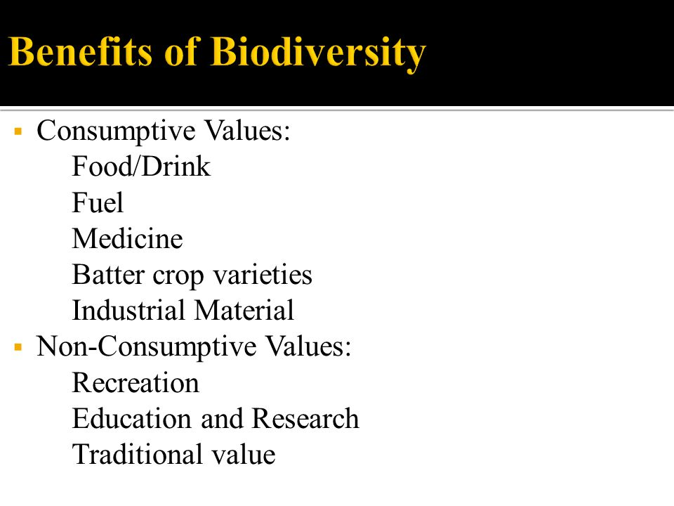  Millennium Ecosystem Assessment.