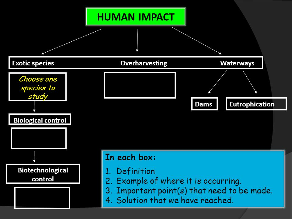 HUMAN IMPACT Exotic species Overharvesting Waterways Choose one species to study Biological control Biotechnological control DamsEutrophication In each box: 1.Definition 2.Example of where it is occurring.