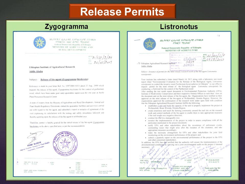 Release Permits Zygogramma Listronotus