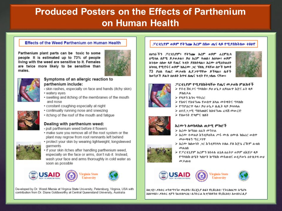 Produced Posters on the Effects of Parthenium on Human Health