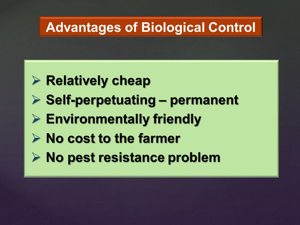  Relatively cheap  Self-perpetuating – permanent  Environmentally friendly  No cost to the farmer  No pest resistance problem Advantages of Biological Control