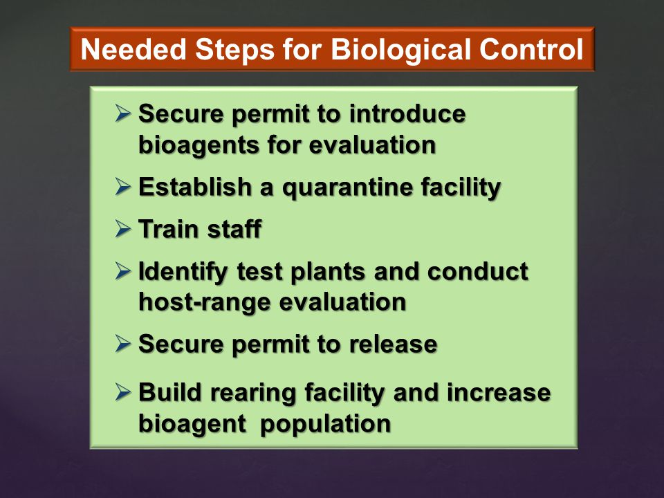  Secure permit to introduce bioagents for evaluation  Establish a quarantine facility  Train staff  Identify test plants and conduct host-range evaluation  Secure permit to release  Build rearing facility and increase bioagent population Needed Steps for Biological Control