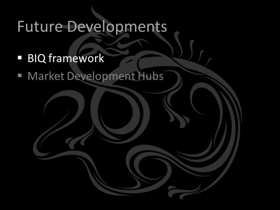 Future Developments  BIQ framework  Market Development Hubs