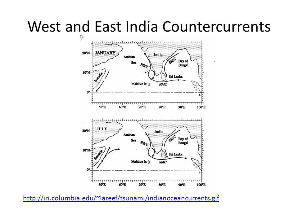 West and East India Countercurrents http://iri.columbia.edu/~lareef/tsunami/indianoceancurrents.gif