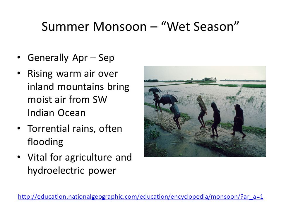 Winter Monsoon – Dry Season Oct to Apr Winds blow from northeast, originating above Mongolia and northeastern China Himalayas block cool air, keeping coast warm Banyan trees bent by strong monsoon winds http://education.nationalgeographic.com/education/encyclopedia/monsoon/?ar_a=1