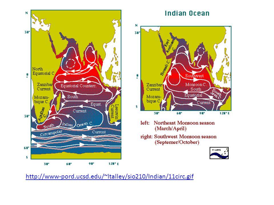 West and East India Countercurrents http://iri.columbia.edu/~lareef/tsunami/indianoceancurrents.gif