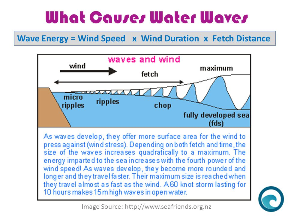 What Causes Water Waves Image Source: http://www.seafriends.org.nz Wave Energy = Wind Speed x Wind Duration x Fetch Distance