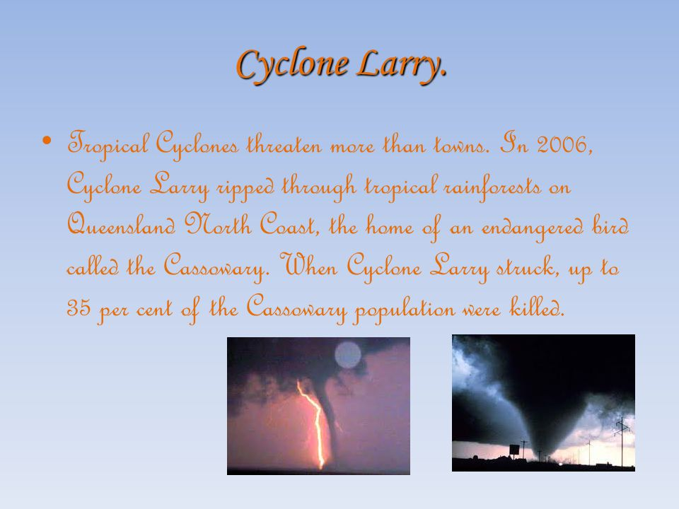 The Rescue Response from the Rest Of Australia. The first rescue response from Cyclone Tracy came from the Northern Territory police. They had already