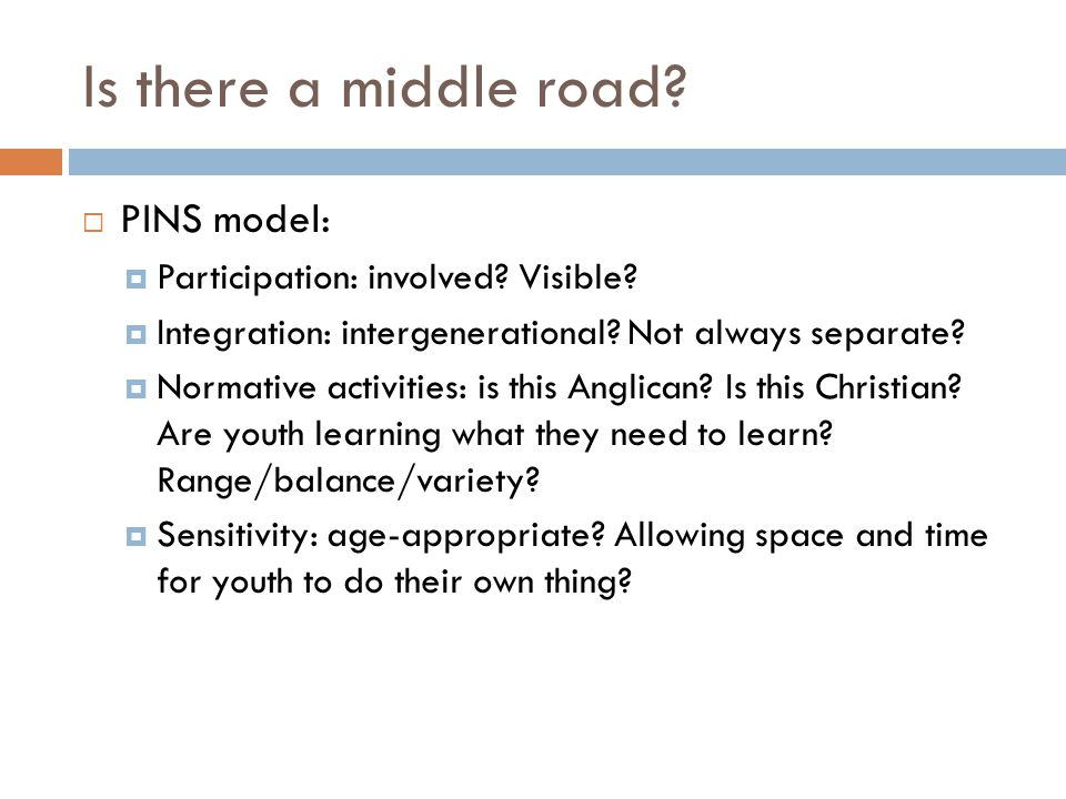 Is there a middle road?  PINS model:  Participation: involved? Visible?  Integration: intergenerational? Not always separate?  Normative activitie