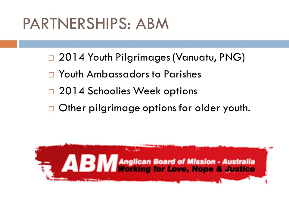 PARTNERSHIPS: ABM  2014 Youth Pilgrimages (Vanuatu, PNG)  Youth Ambassadors to Parishes  2014 Schoolies Week options  Other pilgrimage options for