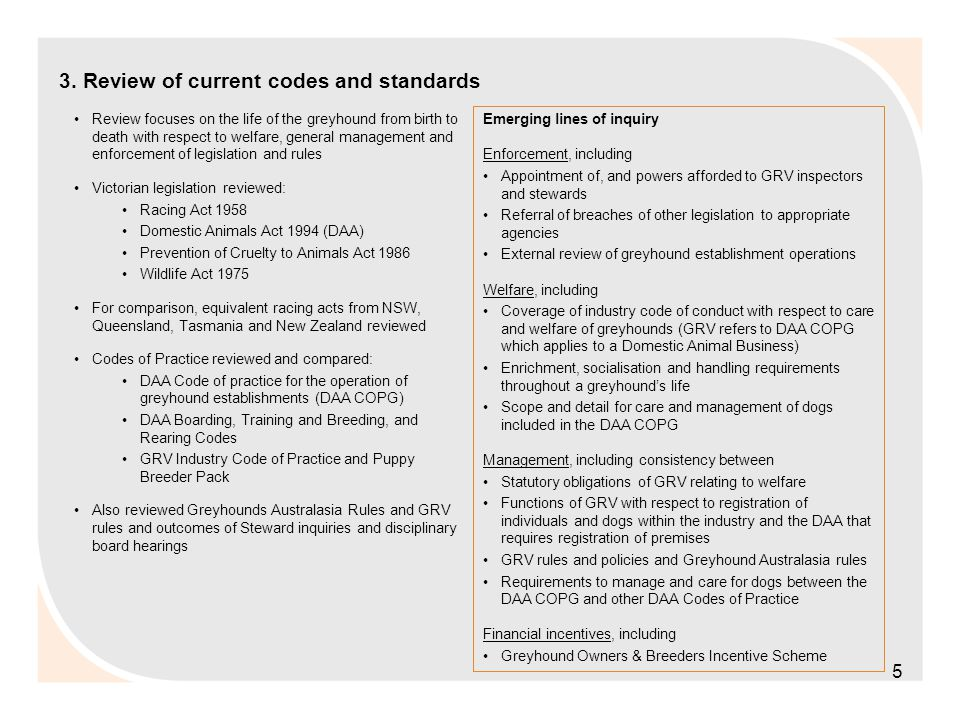 3. Review of current codes and standards Review focuses on the life of the greyhound from birth to death with respect to welfare, general management a