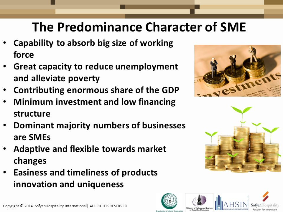 The Predominance Character of SME Capability to absorb big size of working force Great capacity to reduce unemployment and alleviate poverty Contributing enormous share of the GDP Minimum investment and low financing structure Dominant majority numbers of businesses are SMEs Adaptive and flexible towards market changes Easiness and timeliness of products innovation and uniqueness