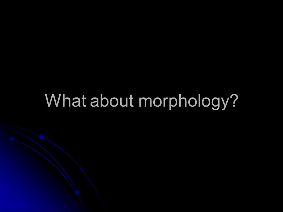 What about morphology