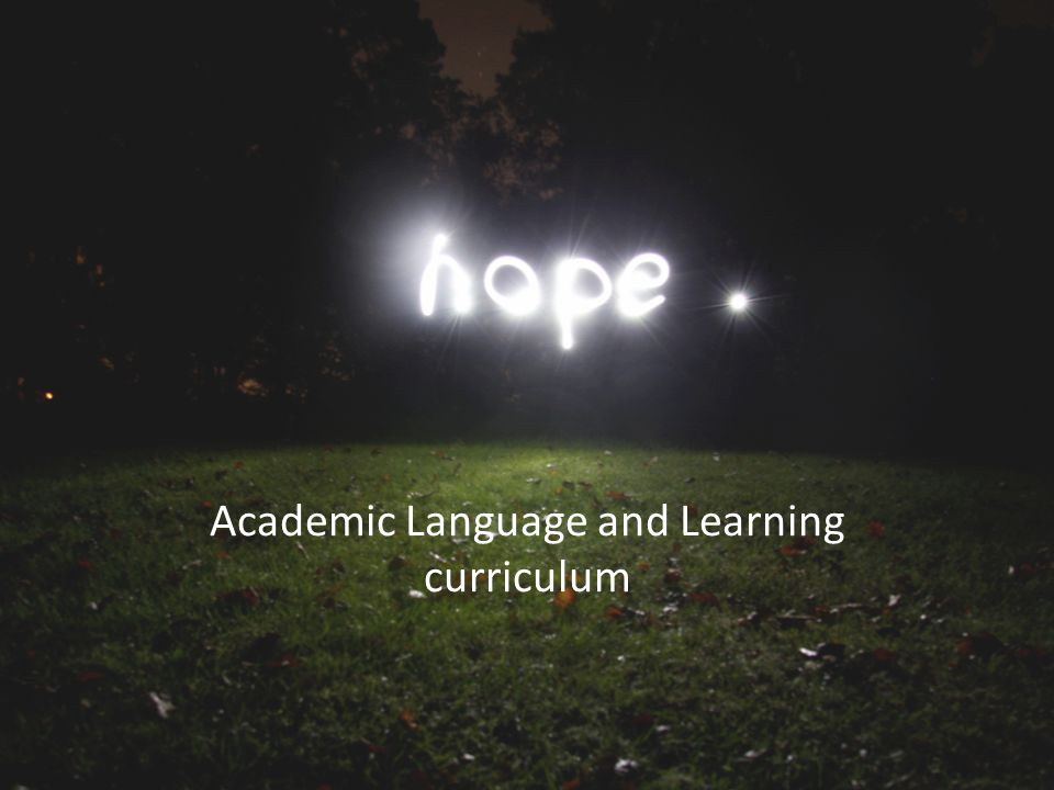Academic Language and Learning curriculum