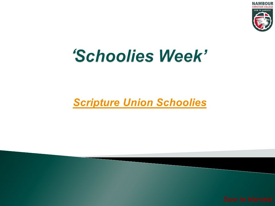 Sow to Harvest Scripture Union Schoolies
