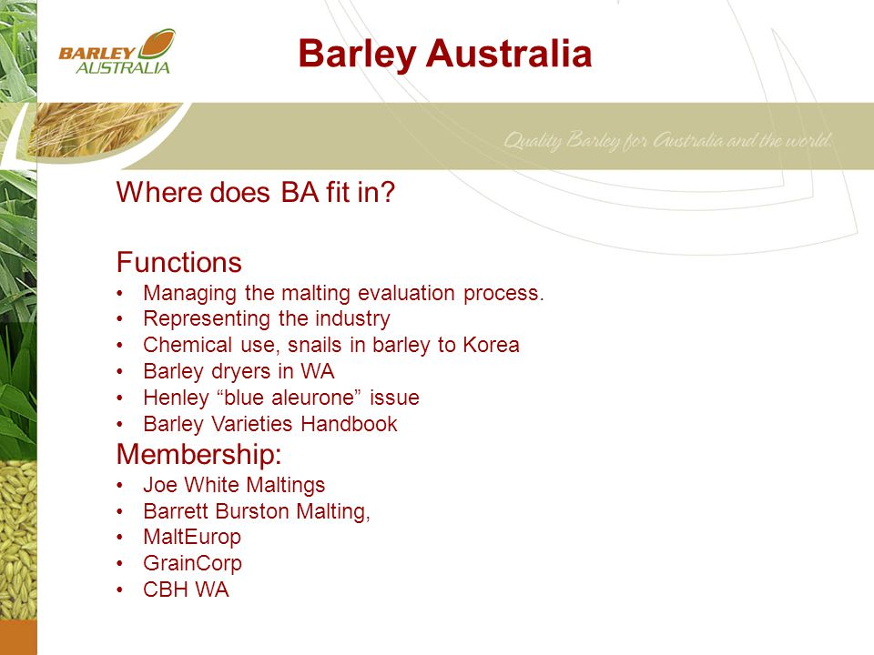 Barley Australia Where does BA fit in. Functions Managing the malting evaluation process.