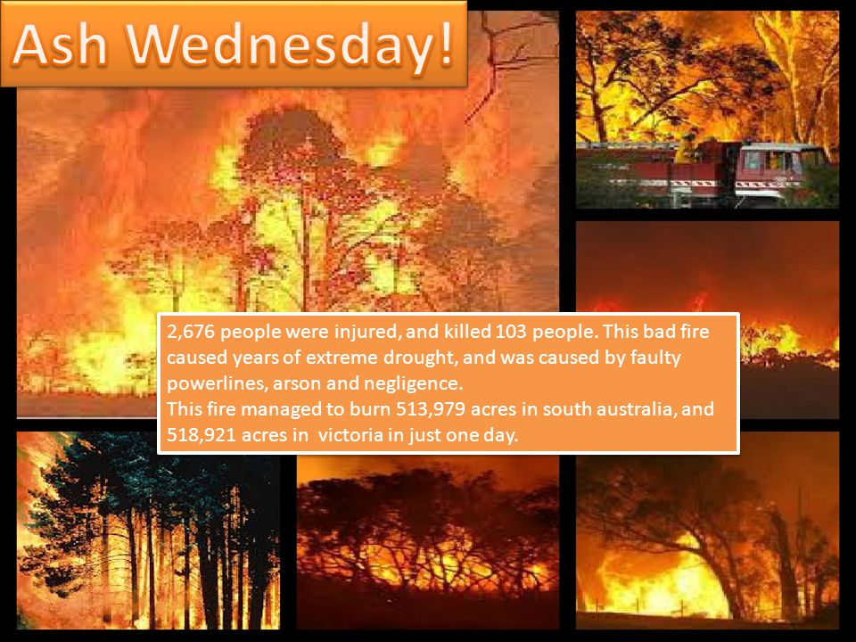 2,676 people were injured, and killed 103 people. This bad fire caused years of extreme drought, and was caused by faulty powerlines, arson and neglig