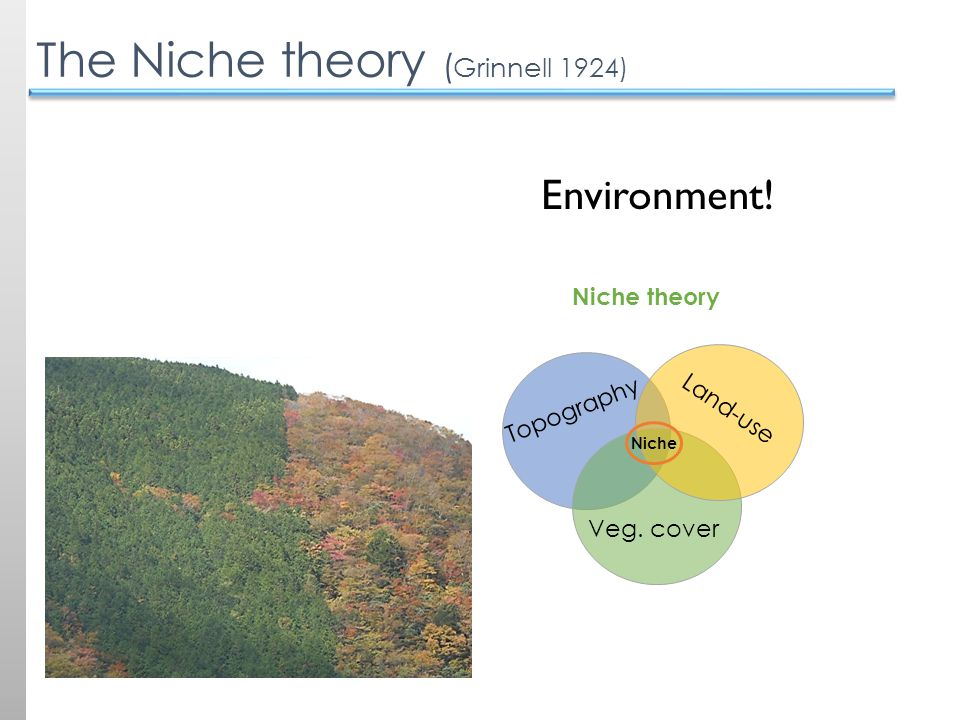 The Niche theory ( Grinnell 1924) Environment! Niche theory Topography Veg. cover Land-use Niche