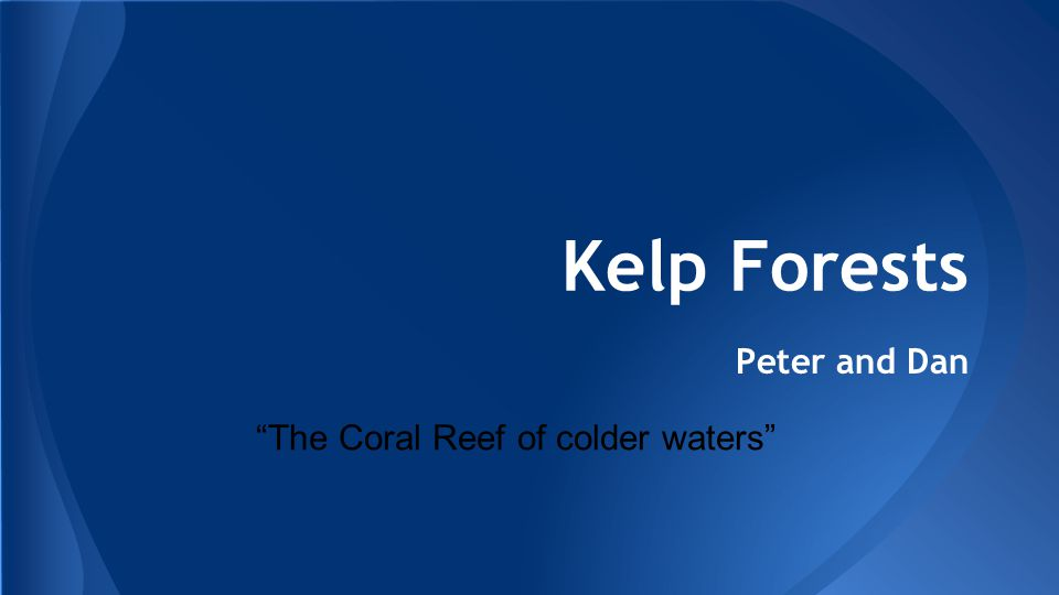 Kelp Forests Peter and Dan The Coral Reef of colder waters