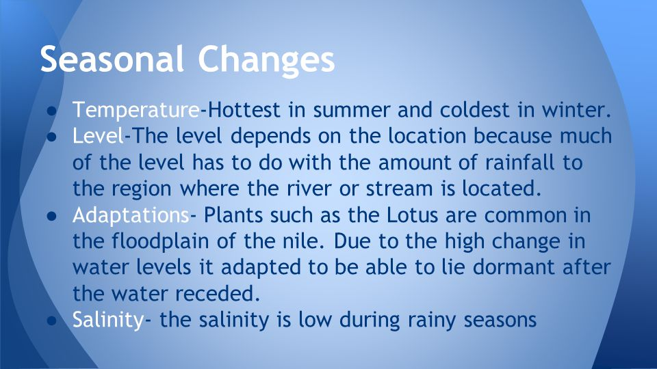 Seasonal Changes ● They will grow in height during Spring ● Can dry up during Summer ● Can freeze over during Winter ● Floods = reduced salinity ● Draught = increased salinity ● The Earth's increasing temperature is causing glaciers to melt and the ocean to expand causing the flooding of estuaries