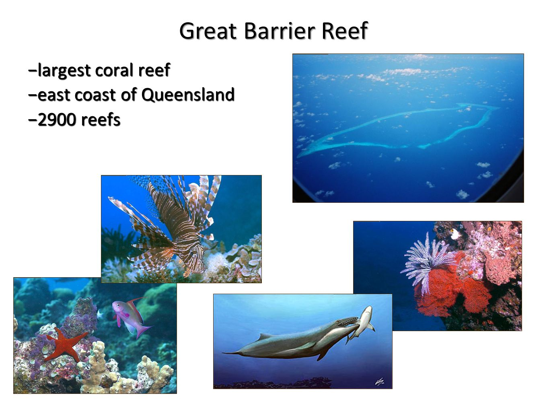 −largest coral reef −east coast of Queensland −2900 reefs Great Barrier Reef