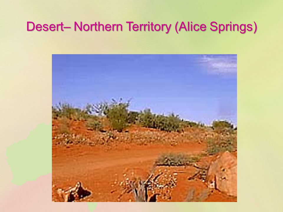 Desert– Northern Territory (Alice Springs)