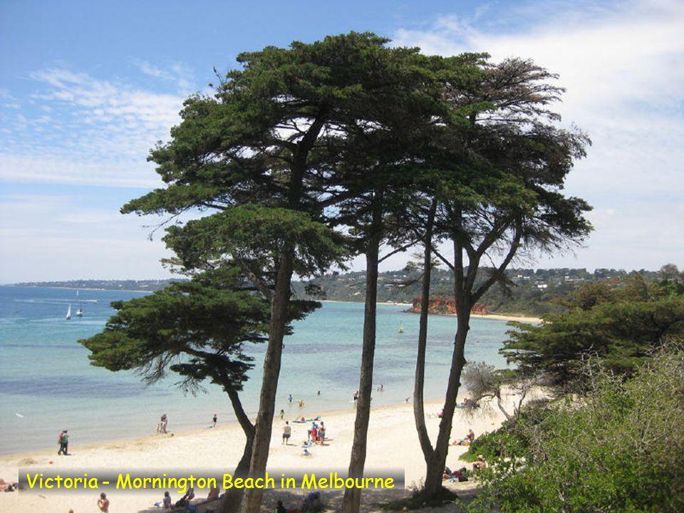 Victoria - 90 Mile Beach