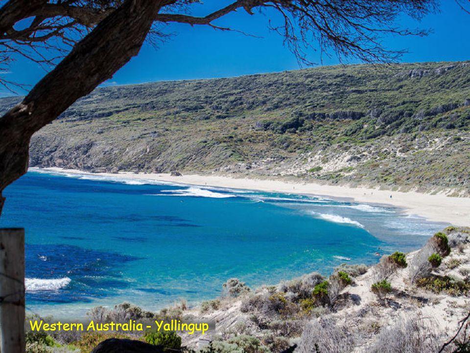 Western Australia - Wedge Island Beach