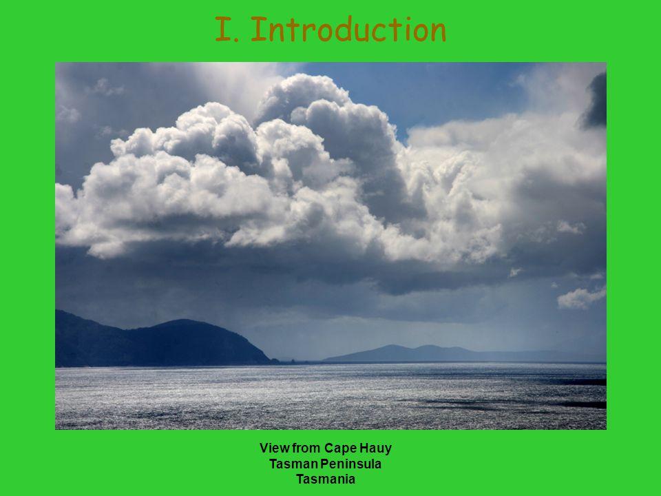 I. Introduction View from Cape Hauy Tasman Peninsula Tasmania