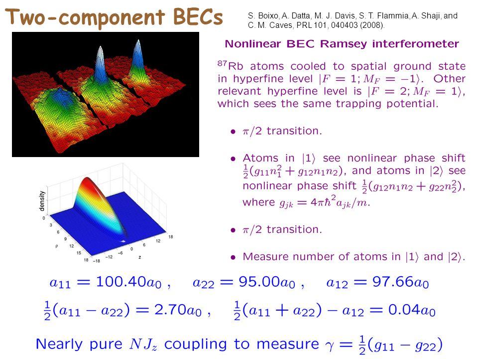 Two-component BECs S. Boixo, A. Datta, M. J. Davis, S.