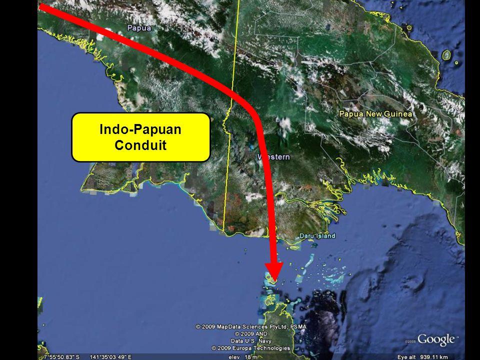 Indo-Papuan Conduit