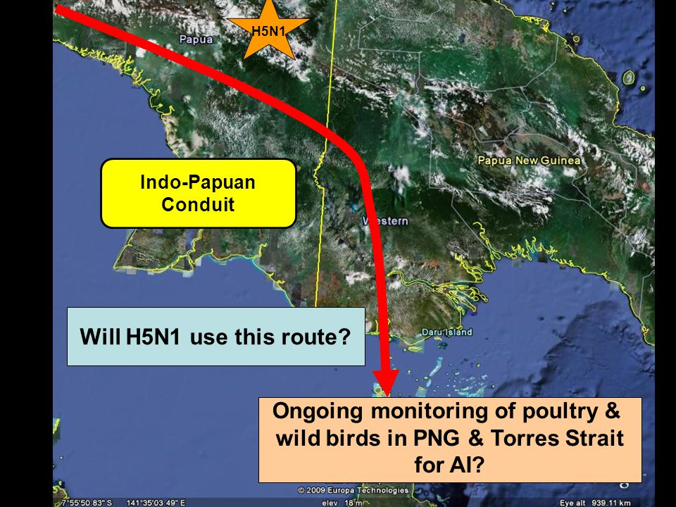 Indo-Papuan Conduit Will H5N1 use this route.