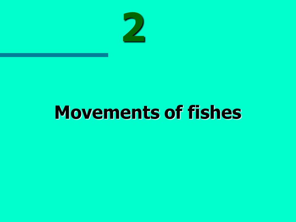 2 Movements of fishes