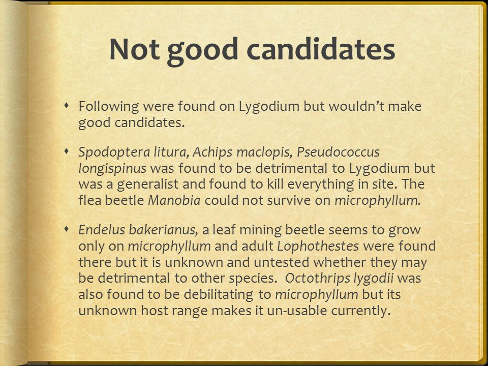 Not good candidates  Following were found on Lygodium but wouldn't make good candidates.