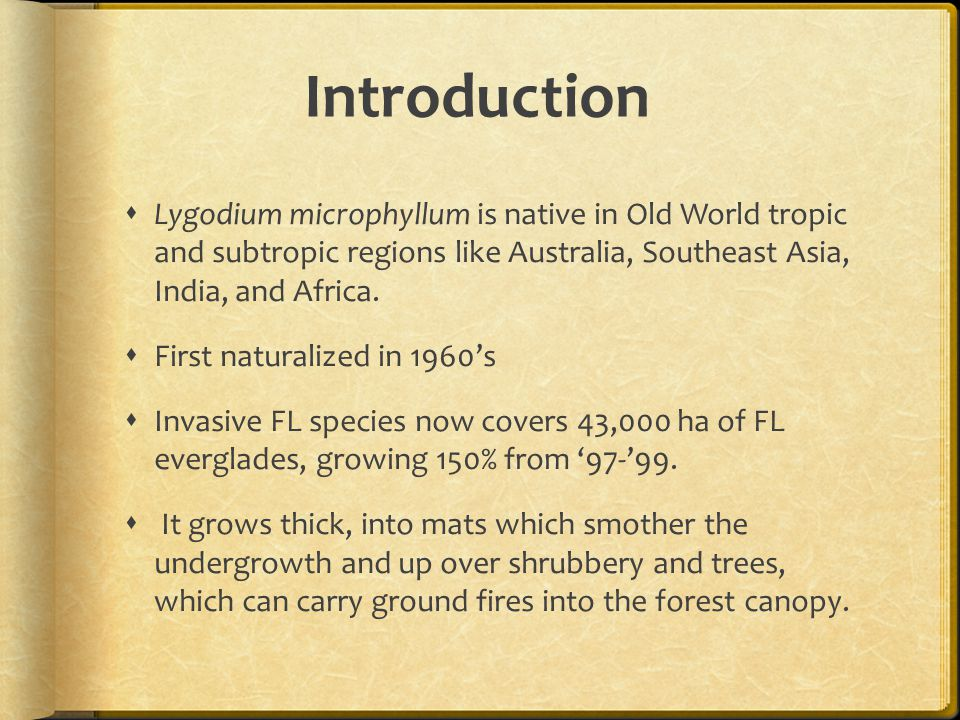 Introduction  Lygodium microphyllum is native in Old World tropic and subtropic regions like Australia, Southeast Asia, India, and Africa.