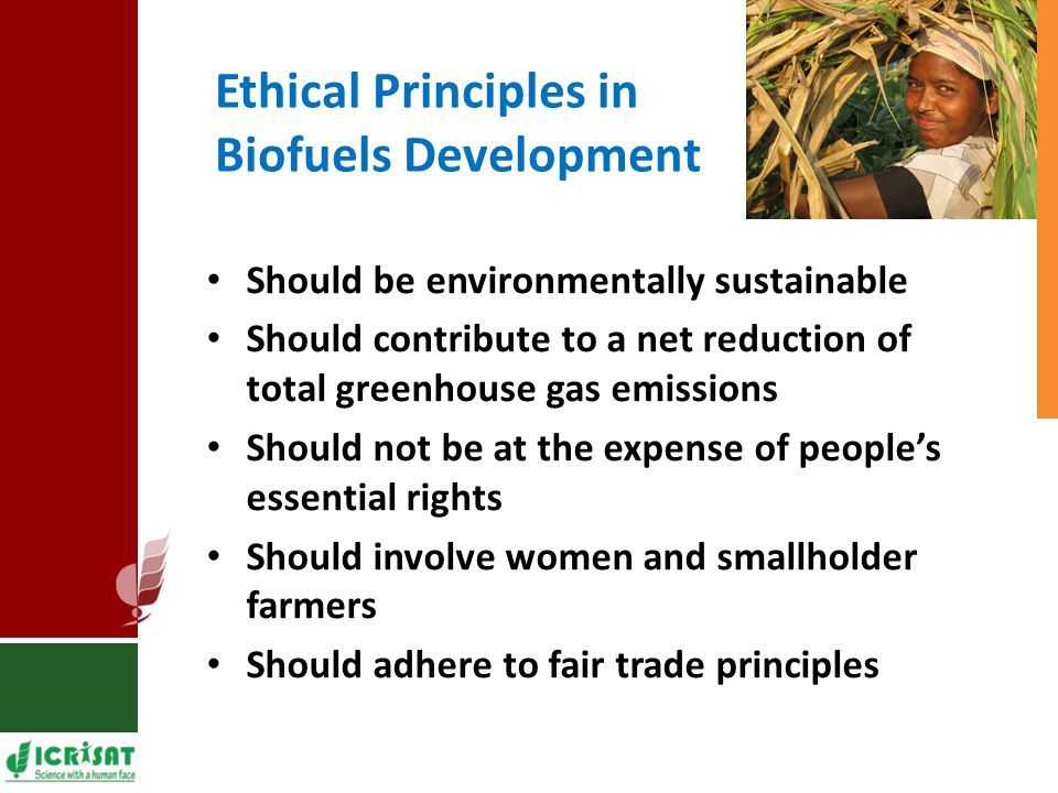 Ethical Principles in Biofuels Development Should be environmentally sustainable Should contribute to a net reduction of total greenhouse gas emissions Should not be at the expense of people's essential rights Should involve women and smallholder farmers Should adhere to fair trade principles