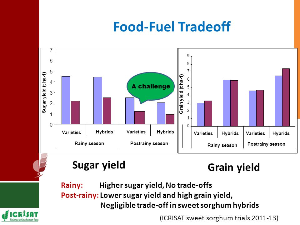 Food-Fuel Tradeoff 0 1 2 3 4 5 6 7 8 9 VarietiesHybridsVarietiesHybrids Rainy season Postrainy season Grain yield (t ha-1) Sugar yield Grain yield 0 1 2 3 4 5 6 7 Varieties HybridsVarietiesHybrids Rainy seasonPostrainy season Sugar yield (t ha-1) A challenge Rainy: Higher sugar yield, No trade-offs Post-rainy: Lower sugar yield and high grain yield, Negligible trade-off in sweet sorghum hybrids (ICRISAT sweet sorghum trials 2011-13)