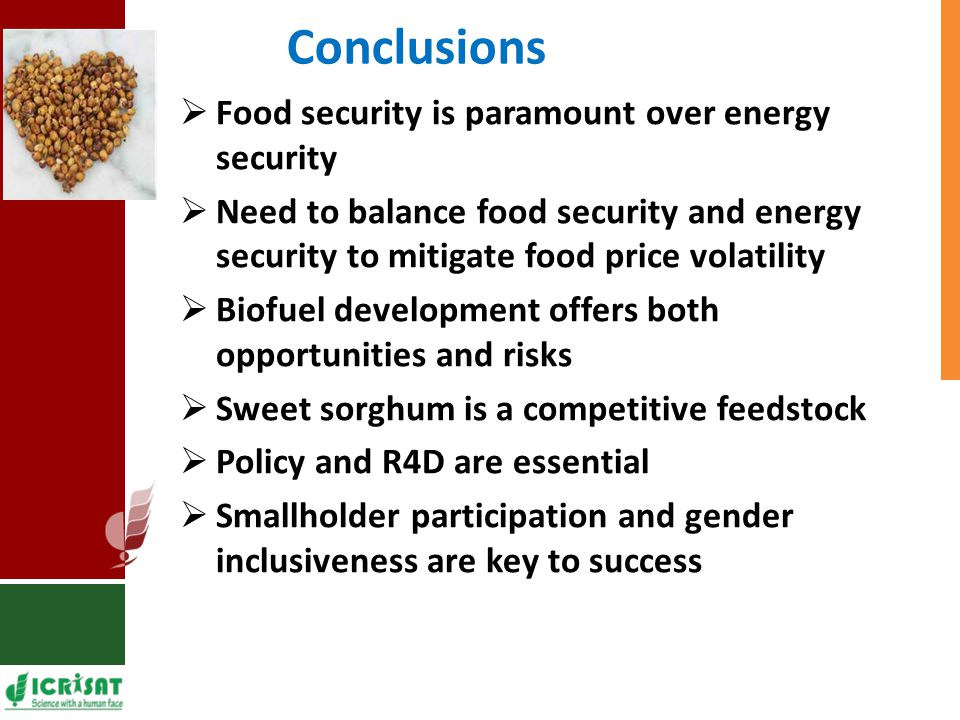 Conclusions  Food security is paramount over energy security  Need to balance food security and energy security to mitigate food price volatility  Biofuel development offers both opportunities and risks  Sweet sorghum is a competitive feedstock  Policy and R4D are essential  Smallholder participation and gender inclusiveness are key to success